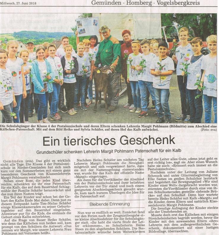 Zeitungsbericht Abgänger Klasse 4
